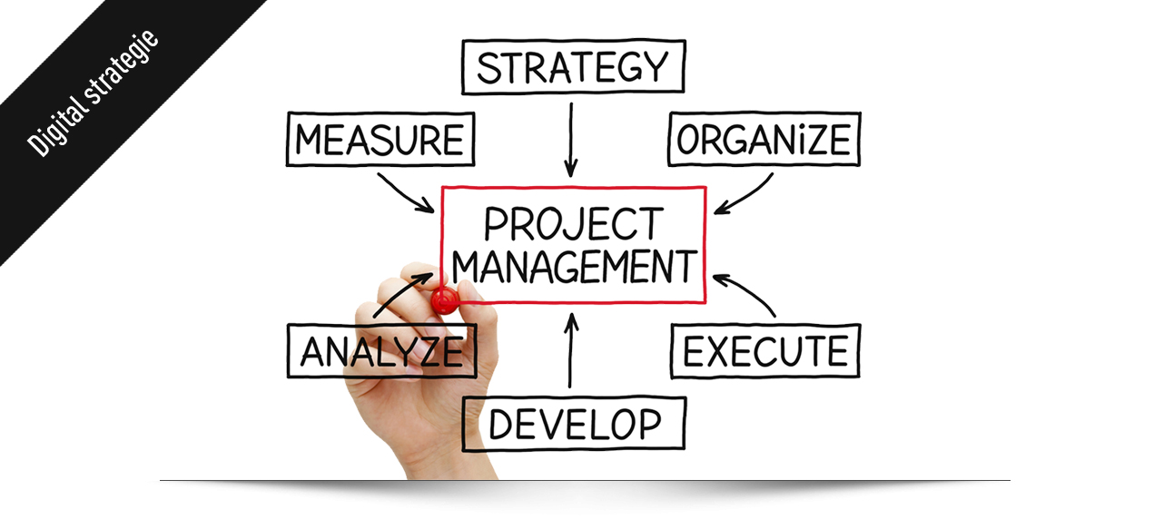 Online project manager